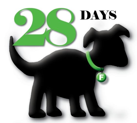 Puppy Truck Countdown29
